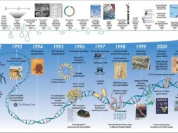 Human_Genome_Project_Timeline_(26964377742)