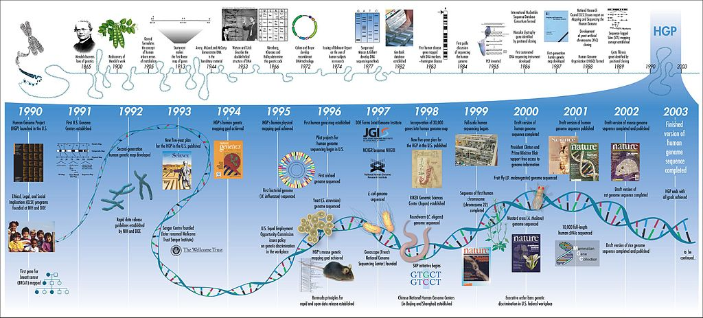 """June 26, 2000: Human Genome Project Completes """"Rough Draft"""""""